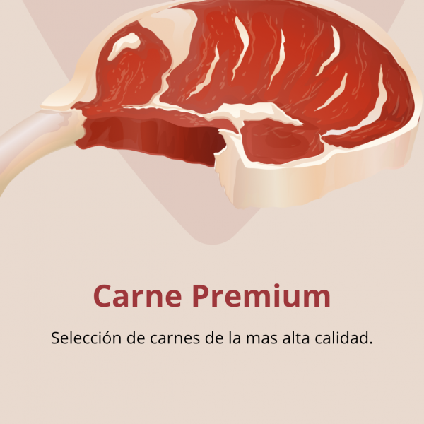 Thumbnail for Carne al Punto